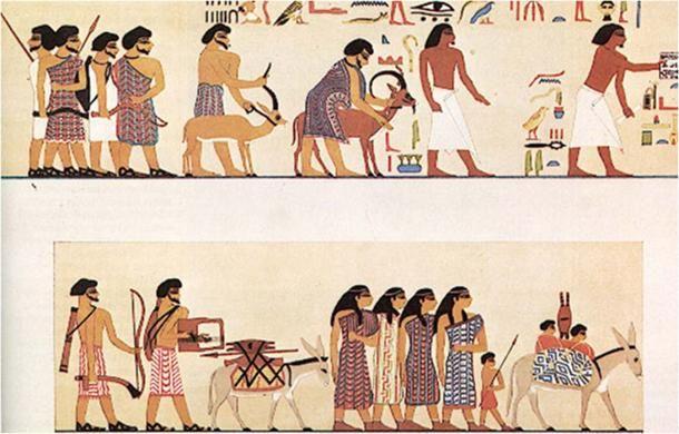 مالیات در مصر